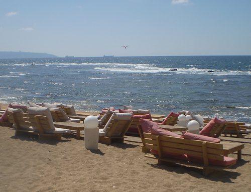 Enjoy the best of the Israeli Summer